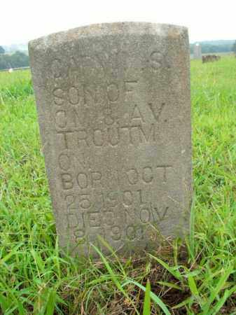 TROUTMAN, CARY S. - Boone County, Arkansas   CARY S. TROUTMAN - Arkansas Gravestone Photos