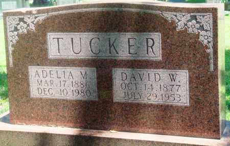 TUCKER, DAVID W - Boone County, Arkansas | DAVID W TUCKER - Arkansas Gravestone Photos