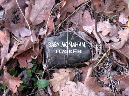 TUCKER, BABY MONAHAN - Boone County, Arkansas | BABY MONAHAN TUCKER - Arkansas Gravestone Photos