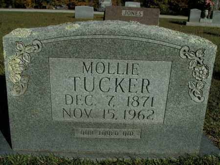 TUCKER, MOLLIE - Boone County, Arkansas   MOLLIE TUCKER - Arkansas Gravestone Photos