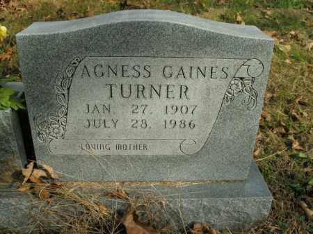 GAINES TURNER, AGNESS - Boone County, Arkansas | AGNESS GAINES TURNER - Arkansas Gravestone Photos