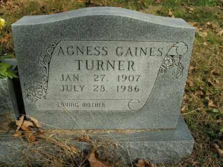 TURNER, AGNESS - Boone County, Arkansas | AGNESS TURNER - Arkansas Gravestone Photos
