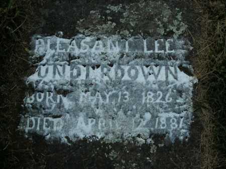 UNDERDOWN, PLEASANT LEE - Boone County, Arkansas | PLEASANT LEE UNDERDOWN - Arkansas Gravestone Photos