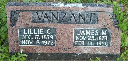 VANZANT, LILLIE C. - Boone County, Arkansas | LILLIE C. VANZANT - Arkansas Gravestone Photos