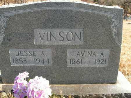 VINSON, LAVINA ANN - Boone County, Arkansas | LAVINA ANN VINSON - Arkansas Gravestone Photos
