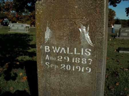 WALLIS, B. - Boone County, Arkansas | B. WALLIS - Arkansas Gravestone Photos
