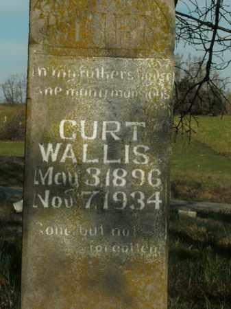 WALLIS, CURT - Boone County, Arkansas | CURT WALLIS - Arkansas Gravestone Photos