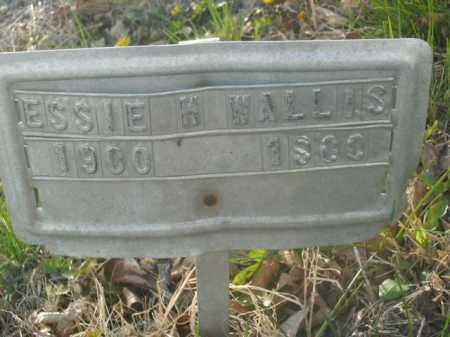 WALLIS, ESSIE H. - Boone County, Arkansas | ESSIE H. WALLIS - Arkansas Gravestone Photos