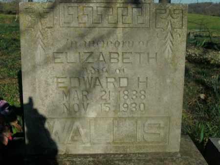 WALLIS, ELIZABETH MARY - Boone County, Arkansas   ELIZABETH MARY WALLIS - Arkansas Gravestone Photos