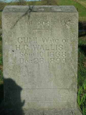 WALLIS, GUMI - Boone County, Arkansas | GUMI WALLIS - Arkansas Gravestone Photos