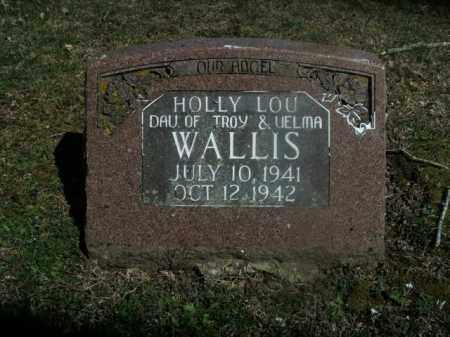 WALLIS, HOLLY LOU - Boone County, Arkansas | HOLLY LOU WALLIS - Arkansas Gravestone Photos