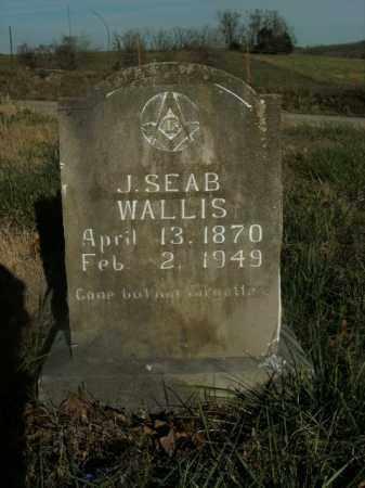 WALLIS, J. SEABORN - Boone County, Arkansas | J. SEABORN WALLIS - Arkansas Gravestone Photos
