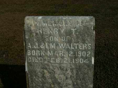 WALTERS, HENRY T. - Boone County, Arkansas | HENRY T. WALTERS - Arkansas Gravestone Photos