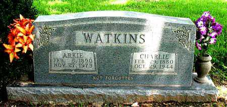 WATKINS, CHARLIE - Boone County, Arkansas | CHARLIE WATKINS - Arkansas Gravestone Photos