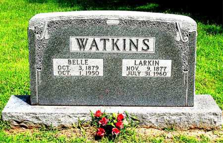 WATKINS, BELLE - Boone County, Arkansas | BELLE WATKINS - Arkansas Gravestone Photos