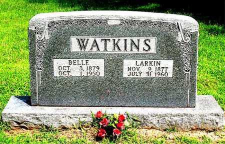 WATKINS, WILLIAM LARKIN (DOCTOR) - Boone County, Arkansas | WILLIAM LARKIN (DOCTOR) WATKINS - Arkansas Gravestone Photos