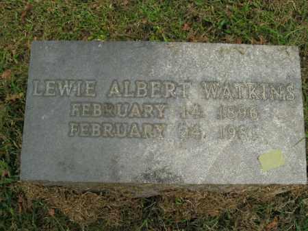 WATKINS  (VETERAN WWI), LEWIE ALBERT - Boone County, Arkansas | LEWIE ALBERT WATKINS  (VETERAN WWI) - Arkansas Gravestone Photos