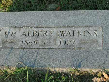WATKINS, WM. ALBERT - Boone County, Arkansas | WM. ALBERT WATKINS - Arkansas Gravestone Photos