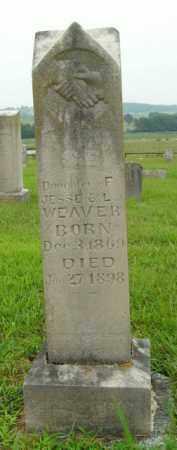 WEAVER, S.E. - Boone County, Arkansas | S.E. WEAVER - Arkansas Gravestone Photos