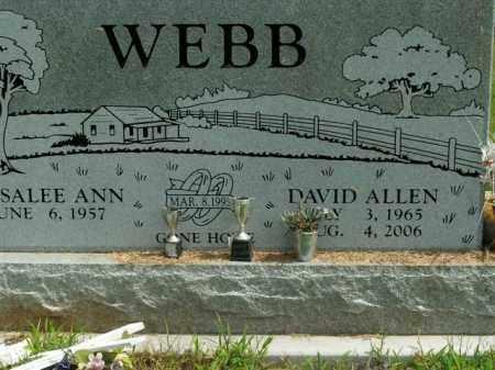 WEBB, DAVID ALLEN - Boone County, Arkansas | DAVID ALLEN WEBB - Arkansas Gravestone Photos