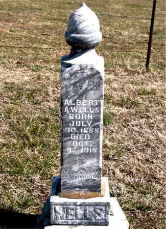 WELLS, ALBERT  A. - Boone County, Arkansas | ALBERT  A. WELLS - Arkansas Gravestone Photos