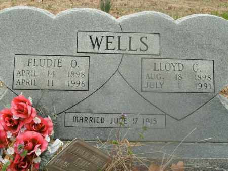 WELLS, LLOYD C. - Boone County, Arkansas | LLOYD C. WELLS - Arkansas Gravestone Photos