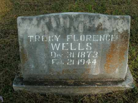 WELLS, TRACY FLORENCE - Boone County, Arkansas | TRACY FLORENCE WELLS - Arkansas Gravestone Photos