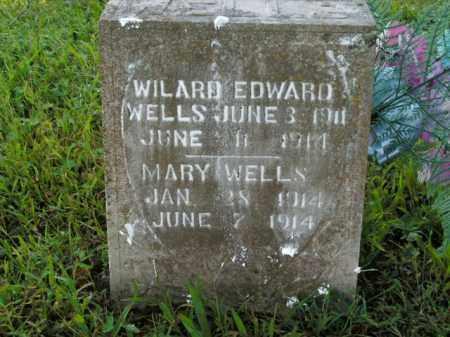 WELLS, WILARD EDWARD - Boone County, Arkansas | WILARD EDWARD WELLS - Arkansas Gravestone Photos