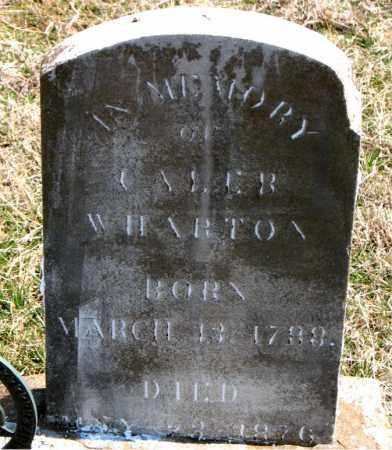 WHARTON  (VETERAN 2 WARS), CALEB - Boone County, Arkansas | CALEB WHARTON  (VETERAN 2 WARS) - Arkansas Gravestone Photos