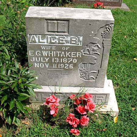 WHITAKER, ALICE BELLE - Boone County, Arkansas | ALICE BELLE WHITAKER - Arkansas Gravestone Photos