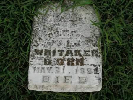 WHITAKER, JASON - Boone County, Arkansas   JASON WHITAKER - Arkansas Gravestone Photos
