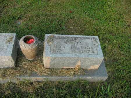 WHITE, ARLIS - Boone County, Arkansas | ARLIS WHITE - Arkansas Gravestone Photos