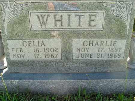 WHITE, CHARLIE - Boone County, Arkansas | CHARLIE WHITE - Arkansas Gravestone Photos
