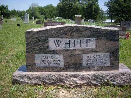 WHITE, JAMES L. - Boone County, Arkansas | JAMES L. WHITE - Arkansas Gravestone Photos