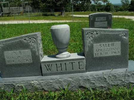 WHITE, SARAH LODUSKIA ANN (SALLIE) - Boone County, Arkansas   SARAH LODUSKIA ANN (SALLIE) WHITE - Arkansas Gravestone Photos
