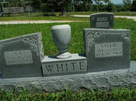 WHITE, NICHOLAS BENONIA - Boone County, Arkansas | NICHOLAS BENONIA WHITE - Arkansas Gravestone Photos