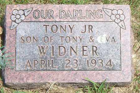 WIDNER, TONY JR. - Boone County, Arkansas   TONY JR. WIDNER - Arkansas Gravestone Photos