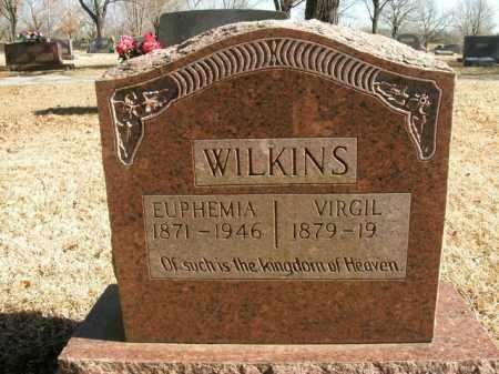 WILKINS, EUPHEMIA - Boone County, Arkansas | EUPHEMIA WILKINS - Arkansas Gravestone Photos