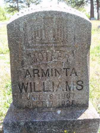 WILLIAMS, ARMINTA - Boone County, Arkansas | ARMINTA WILLIAMS - Arkansas Gravestone Photos