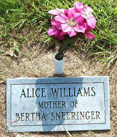 WILLIAMS, ALICE - Boone County, Arkansas   ALICE WILLIAMS - Arkansas Gravestone Photos
