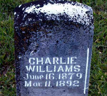 WILLIAMS, CHARLIE - Boone County, Arkansas | CHARLIE WILLIAMS - Arkansas Gravestone Photos