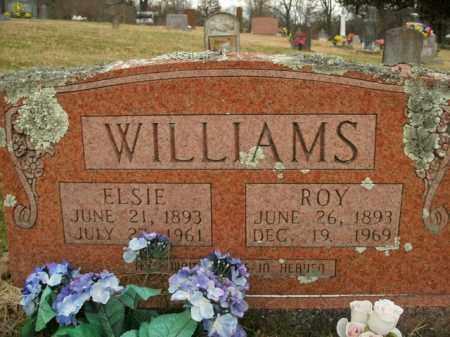 WILLIAMS, ROY - Boone County, Arkansas | ROY WILLIAMS - Arkansas Gravestone Photos