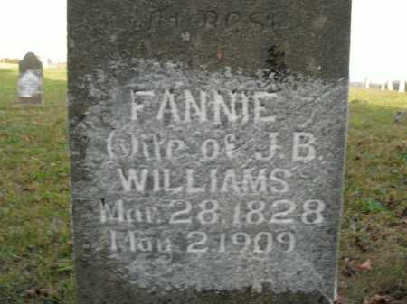 WILLIAMS, FANNIE - Boone County, Arkansas | FANNIE WILLIAMS - Arkansas Gravestone Photos