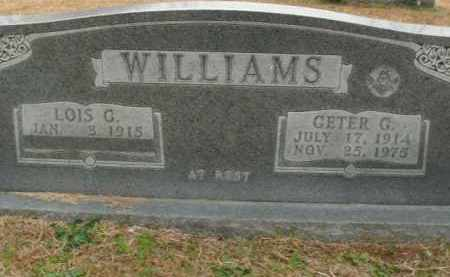 WILLIAMS, GETER G. - Boone County, Arkansas | GETER G. WILLIAMS - Arkansas Gravestone Photos