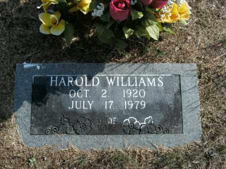 WILLIAMS, HAROLD - Boone County, Arkansas | HAROLD WILLIAMS - Arkansas Gravestone Photos