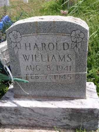 WILLIAMS, HAROLD - Boone County, Arkansas | HAROLD WILLIAMS - Arkansas Gravestone Photos