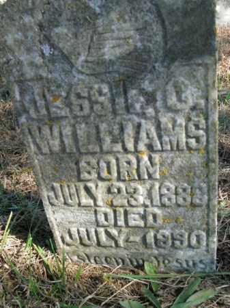 WILLIAMS, JESSIE O. - Boone County, Arkansas | JESSIE O. WILLIAMS - Arkansas Gravestone Photos