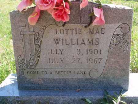WILLIAMS, LOTTIE MAE - Boone County, Arkansas | LOTTIE MAE WILLIAMS - Arkansas Gravestone Photos