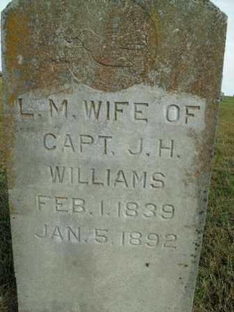 WILLIAMS, LOUISA M. - Boone County, Arkansas   LOUISA M. WILLIAMS - Arkansas Gravestone Photos