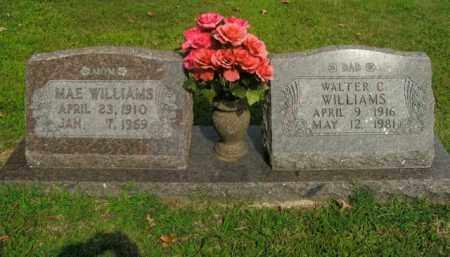 WILLIAMS, WALTER C. - Boone County, Arkansas | WALTER C. WILLIAMS - Arkansas Gravestone Photos